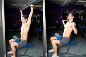 Dorsaux poulie haute musculation