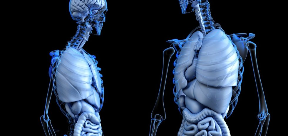 l'osteopathie à paris