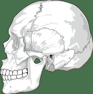 bruxisme et ostéopathe paris