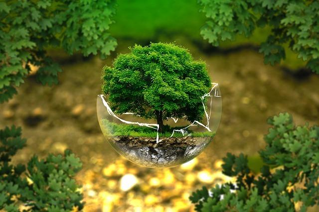 environnement et ostéopath